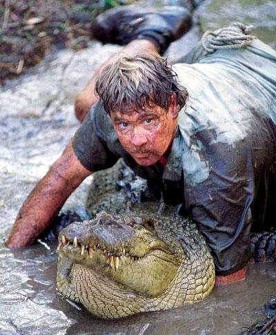 Image result for australian wrestling crocodile